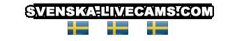 www.svenska-livecams.com